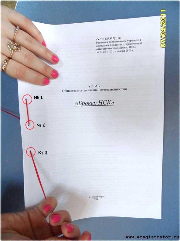 шнуровка документов образец - фото 6